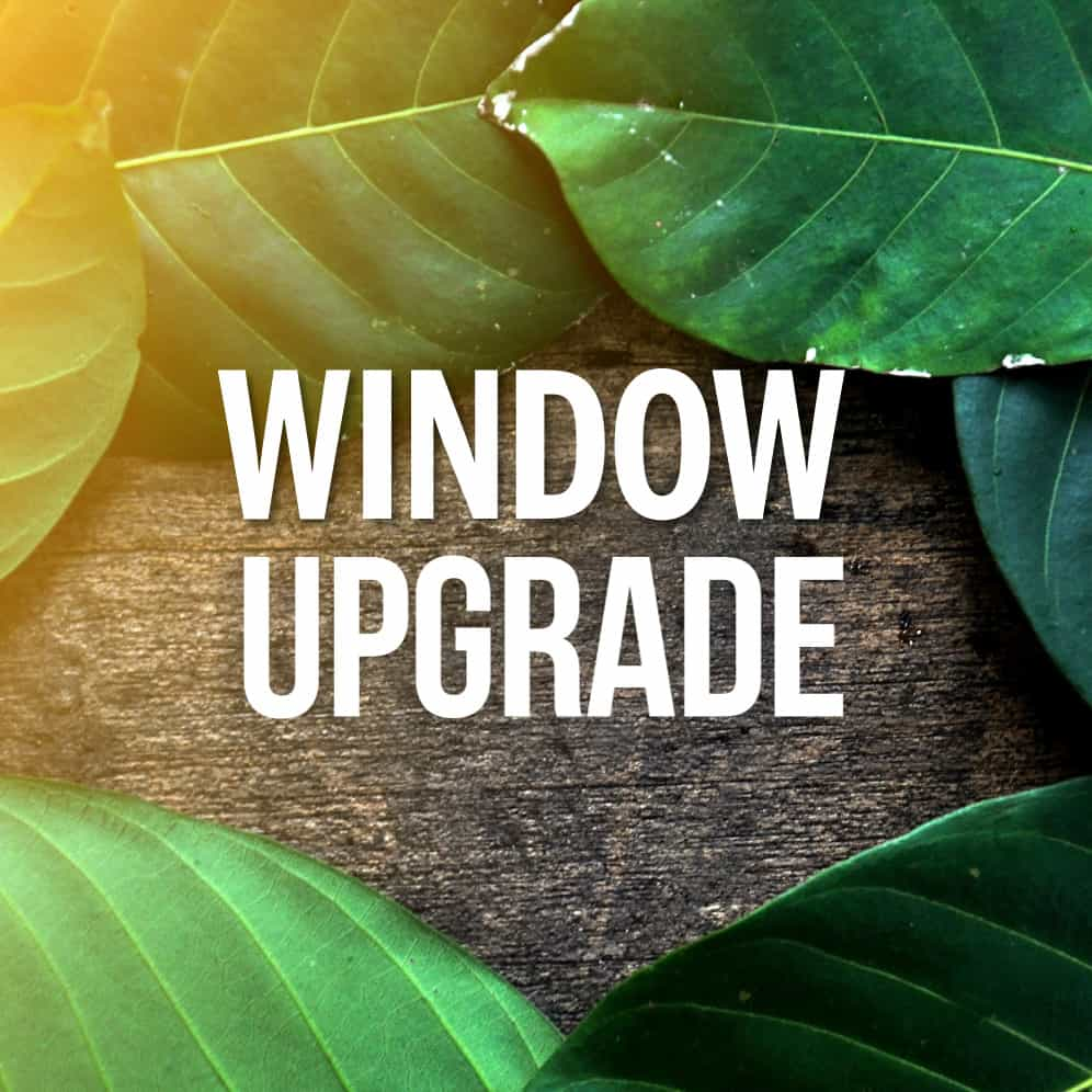 Special Offer - Window Upgrade